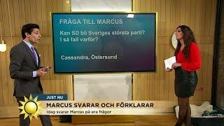 Oscarsson: Jag tror att SD kan bli Sveriges största parti - Nyhetsmorgon (TV4)