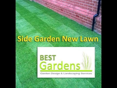 Side Garden New Lawn