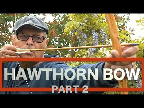 Challenging Hawthorn Bow & Advice for Aspiring Bowyers. Part Two of The Hedgerow Bow