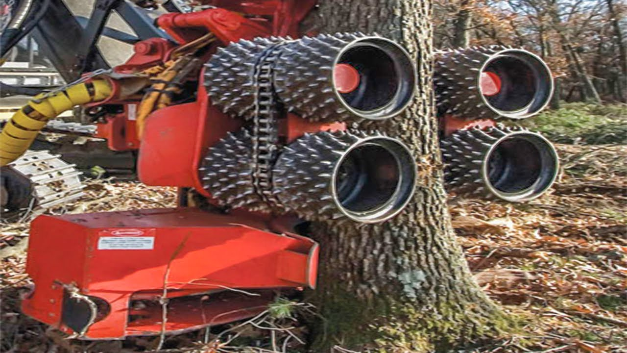 Amazing Fastest Huge Tree Harvest & Removal Machines Working, Incredible Tree Cutting Equipment