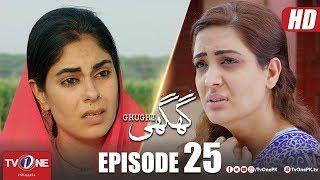Ghughi | Episode 25 | TV One | Mega Drama Serial | 12 July 2018