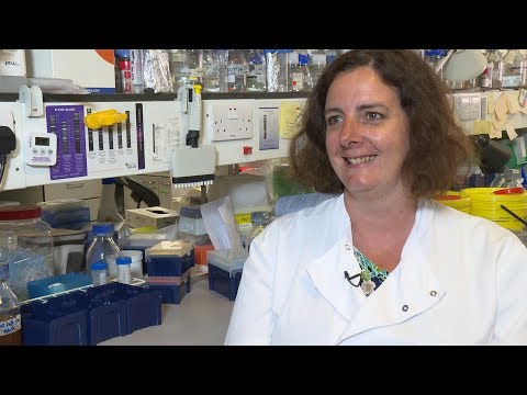 Imperial researchers are working to tackle Group-B Streptococcal infections