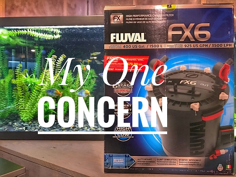 My 1 Concern With The Fluval FX6