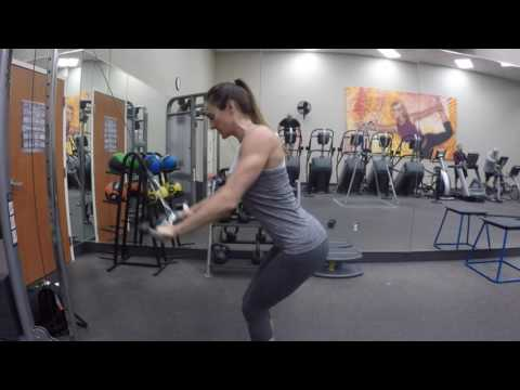 Free Back/Bicep Workout
