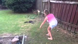 Playing with my cat || Ashlie36XO