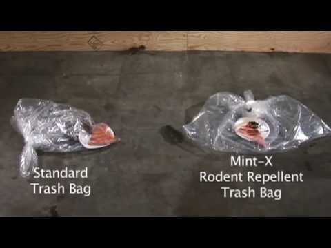 How to Get Rid of Rats with MintX REPELLENT Bags & Stop Feeding Rats via use of NORMAL Garbage Bags