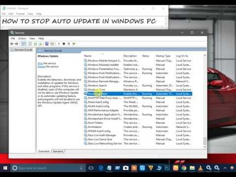 Stop auto update