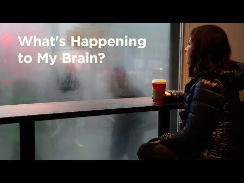 My Brain on Information Overload