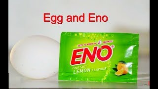 Eno + Egg = Death?  | MUST WATCH