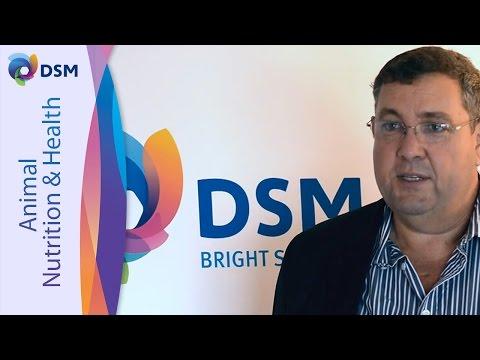 Rick Kleyn On His Presentation At DSM's Proteases Seminar