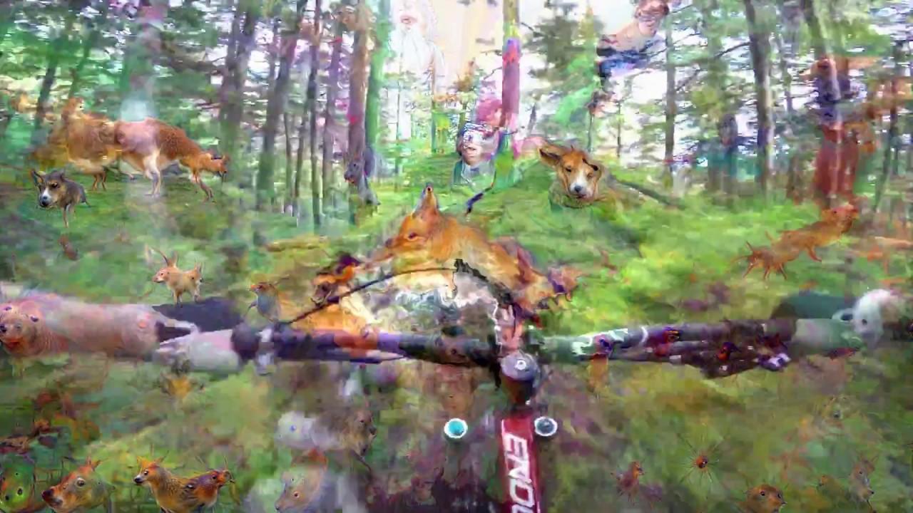 Deep Dream: Weird Woods