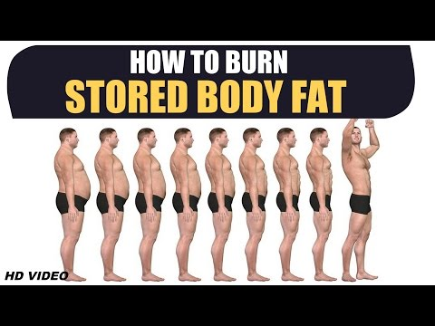 How to Burn STORED BODY FAT - Deep Information by Guru Mann