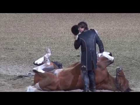 Funniest Horse Act Ever! Tommie Turvey and Pokerjoe! - Night of the Horse 2015 - #DMNHS