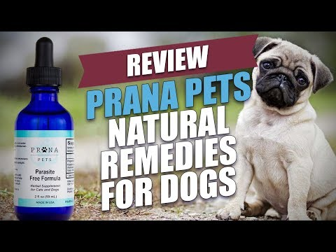 Prana Pets Natural Remedies for Dogs Review