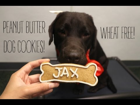 How To Make Peanut Butter Dog Cookies