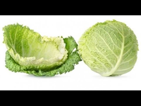 Why Women Put Cabbage Leaves On Their Breasts, Will Surprise You!