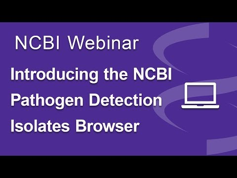 Introducing the NCBI Pathogen Detection Isolates Browser
