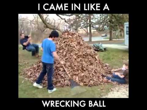 Came in like a Wrecking Ball into a Leaf Pile