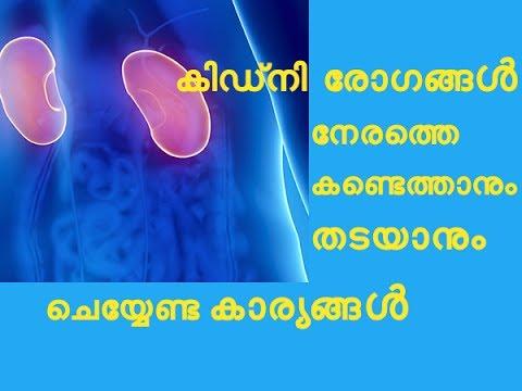 നിങ്ങൾക്ക്  കിഡ്നി രോഗങ്ങൾക്ക് സാധ്യതയുണ്ടോ  Kidney Disease Symptoms and Prevention