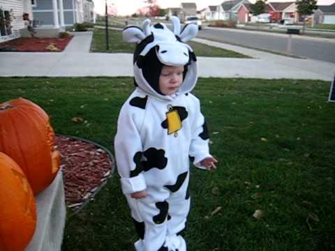 Luke In His Cow Costume