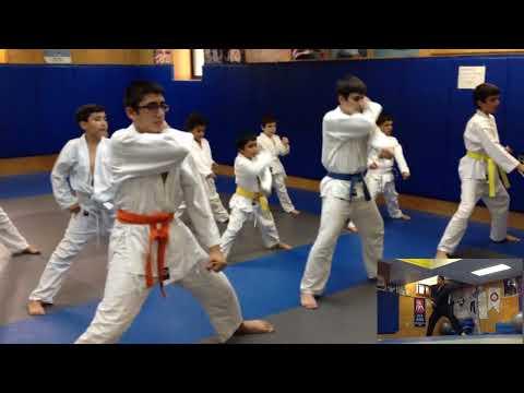 Shotokan Karate Training