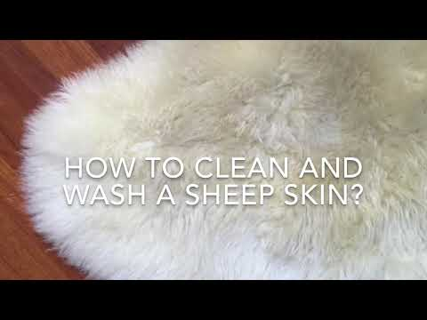 Easy! How to clean and wash a sheepskin.
