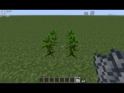 Minecraft how to get a giant jungle tree