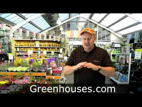 Plant propagation for greenhouse kits