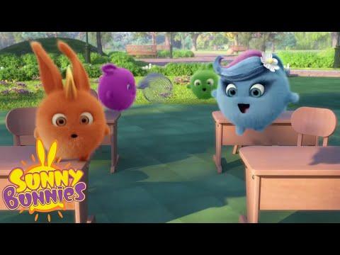 Xxx Mp4 Cartoons For Children SUNNY BUNNIES Wildlife Lesson New Episode Season 4 Cartoon 3gp Sex