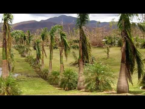 Cyclone Yasi aftermath - Bilyana
