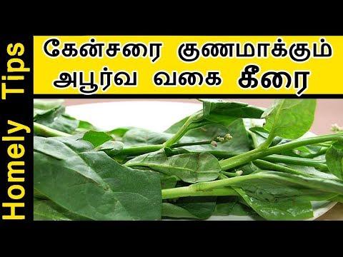 கேன்சரை குணமாக்கும் அபூர்வ வகை கீரை Remedy for Cancer in Tamil pasalai keerai bayanhal