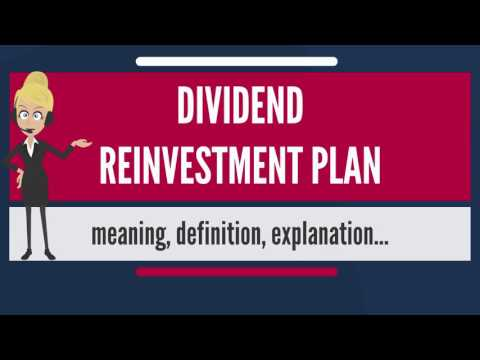 What is DIVIDEND REINVESTMENT PLAN? What does DIVIDEND REINVESTMENT PLAN mean?