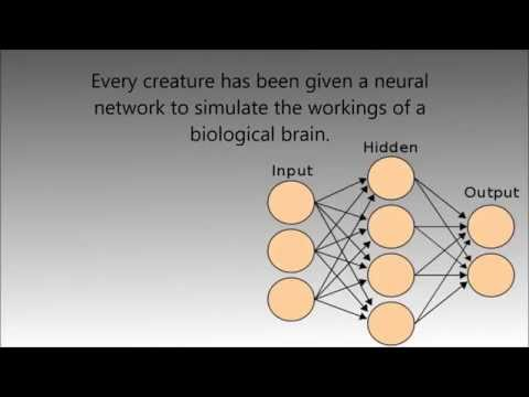 Evolving virtual creatures using neural networks and genetic algorithms