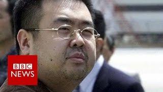 Why was Kim Jong-nam killed? BBC News