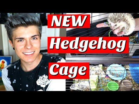 NEW HEDGEHOG CAGE!!! | Cage Tour