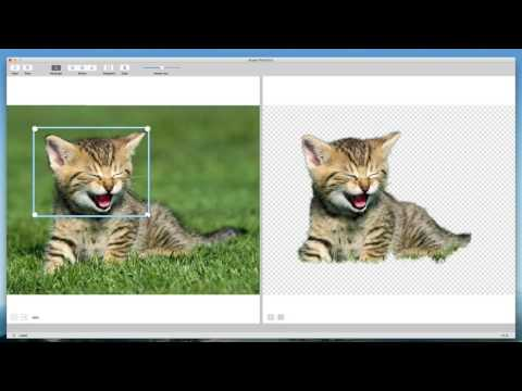 Remove background from image mac - Photo Background Remover for Mac
