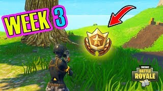 Follow The Treasure Map Found In Salty Springs Fortnite Wee