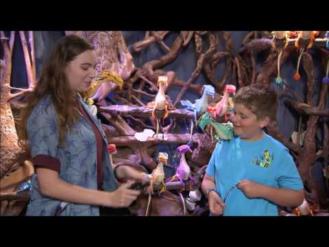 Windtraders - Pandora: The World of AVATAR - Disney's Animal Kingdom