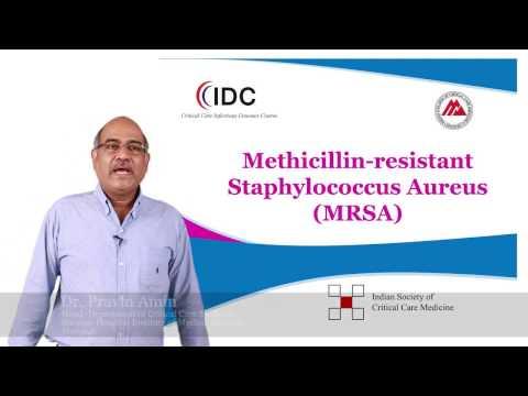 Methicillin-resistant Staphylococcus Aureus - Dr Pravin Amin - CCIDC