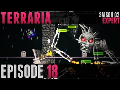 Terraria Expert - #18 - Skeletron Prime