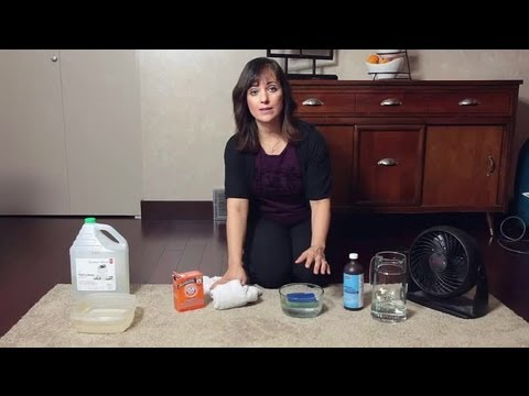 How Do I Clean Flood-Damaged Carpet? : Home Cleaning