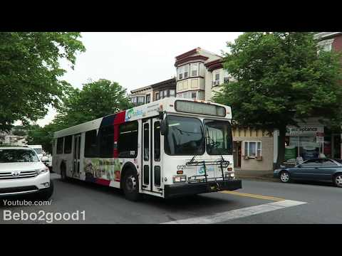 Easton LANTA Bus Route 101 & 220 at Northhampton & Walnut St (PA)