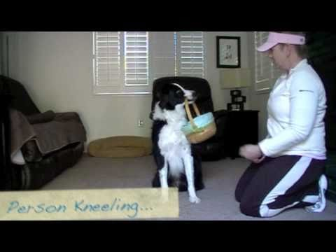 Hold and Carry an Object - Clicker Training 'Dog Training'