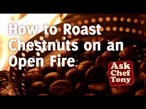 How to Roast Chestnuts on an Open Fire ( + everything else you'd ever want to know about chestnuts )