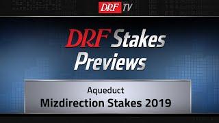 Mizdirection Stakes 2019 Preview