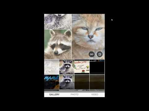 Layout from Instagram - Create amazing collages for Instagram - Download Video Previews
