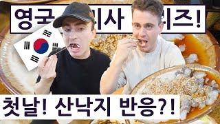 Download 첫날! 산낙지를 만나본 영국 요리사는 과연?! !! 영국 요리사 한국 음식 투어 2탄 1편!! British Chef's Korean Food Tour 2 Ep.1!! Video