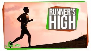 what causes runners high