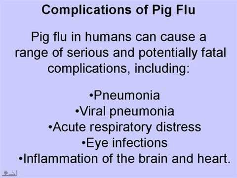 Pig Flu Symptoms - Get Viral Protection from Swine Flu, Avian Bird Flu, Flue Pandemic