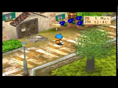 Harvest Moon: Boy & Girl - Year 1/Fall/Day 5 - Planting More Flower Seeds - #64